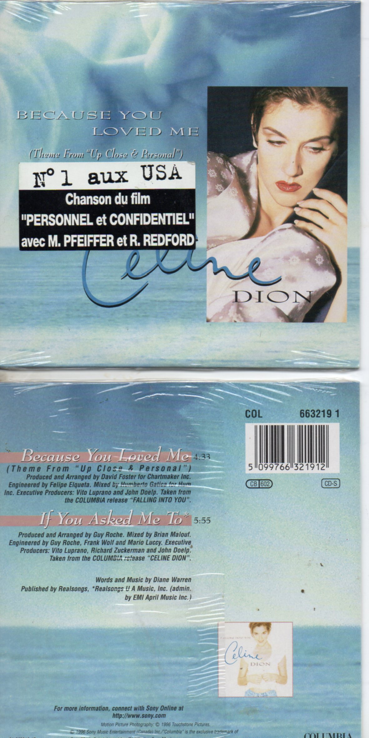Celine DION - Soundtrack up close &amp; personal - Because You Loved Me French Sticker 2-track Card Sleeve