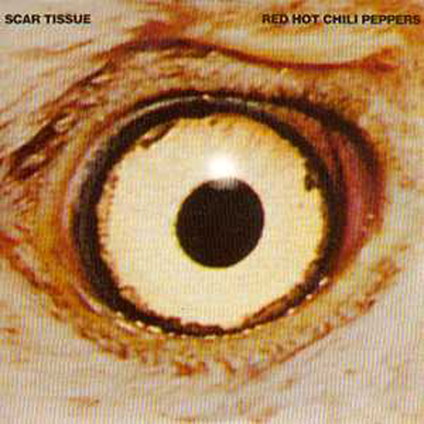 RED HOT CHILI PEPPERS - Scar Issue 2 Tracks Card Sleeve Inc Gong Li