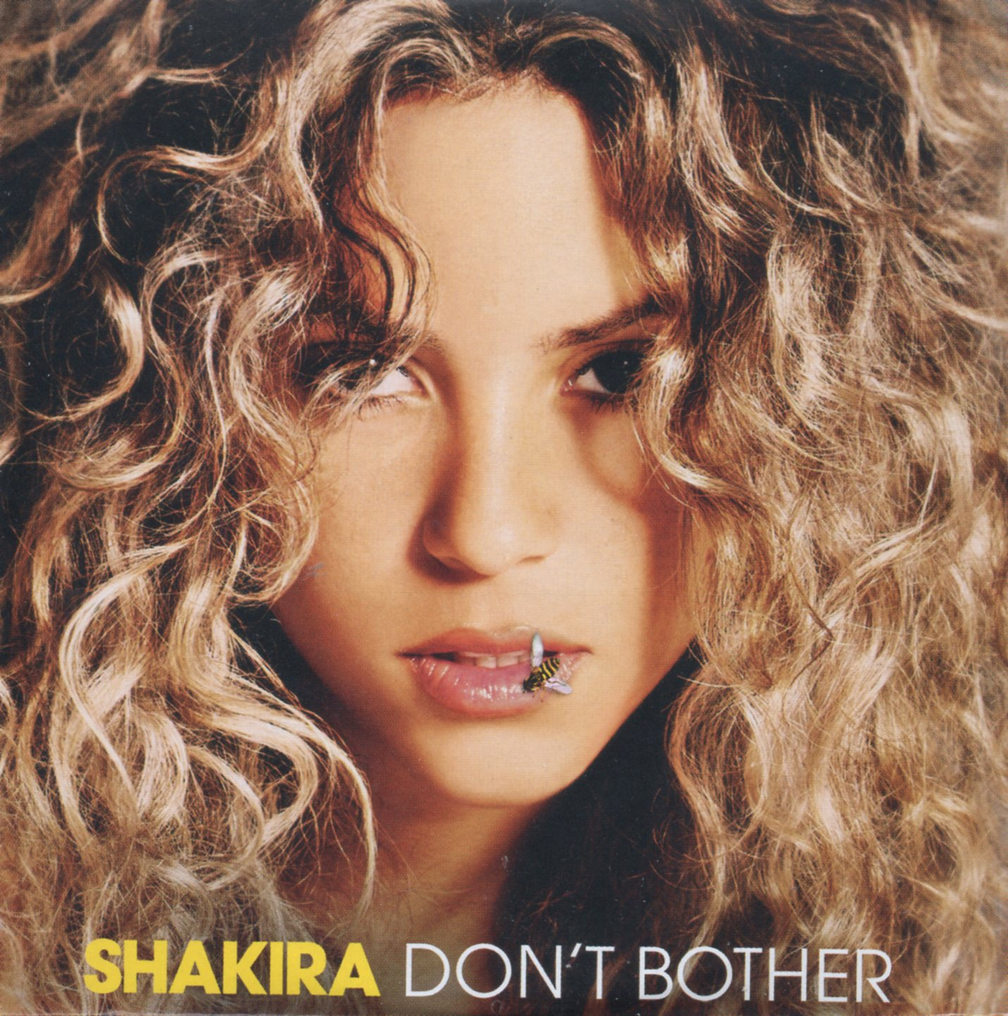 SHAKIRA - Don't bother 2-track CARD SLEEVE - CD single