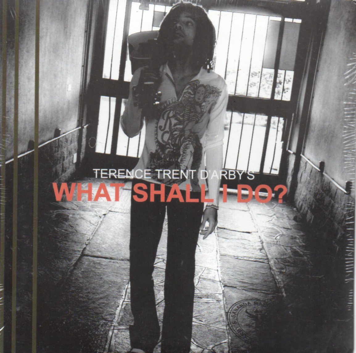 TERENCE TRENT D'ARBY - What shall I do ? Promo 1-track CARD SLEEVE - CD single